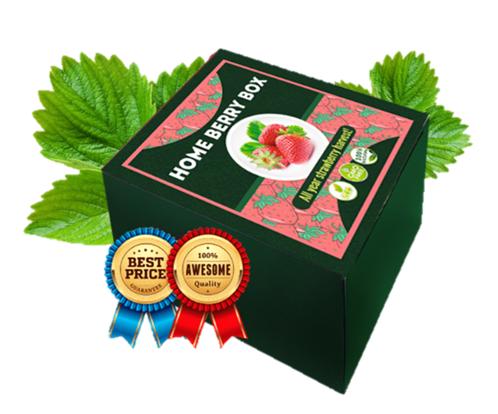 Home Berry Box - Как се приема? как се използва?