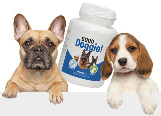 Good Doggie - цена - българия - аптеки