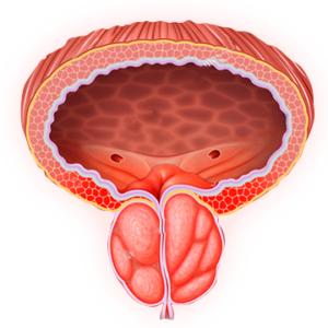 Prostaline - отзиви - бг мама - форум - коментари - мнения