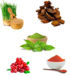 Super Antioxidant - коментари - форум - мнения - отзиви - бг мама