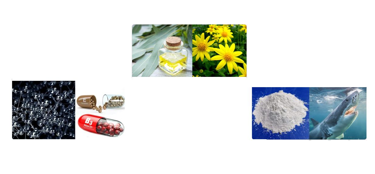 Hondrox - цена - аптеки - българия
